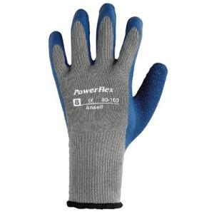 Ansell PowerFlex Gloves - 80-100-10 at Sears.com