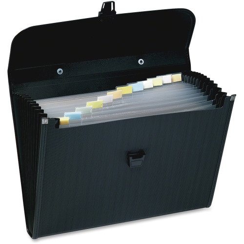Wilson Jones Briefcase-Style Poly Expanding File